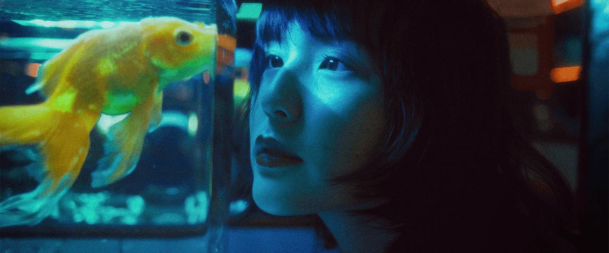 Vista de una mujer viendo a un pez en la pecera.